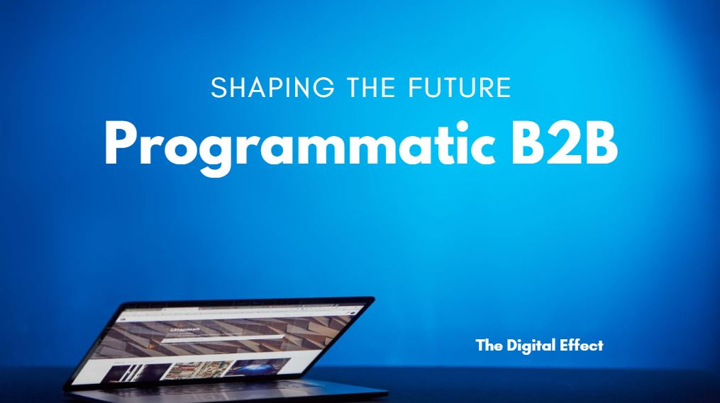 Programmatic B2B – Shaping the future with The Digital Effect